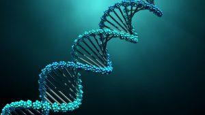 ساختار DNA