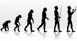 الگوریتمهای تکاملی